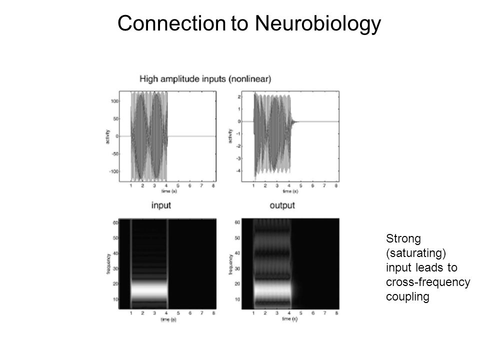 Connection to Neurobiology Strong (saturating) input leads to cross-frequency coupling