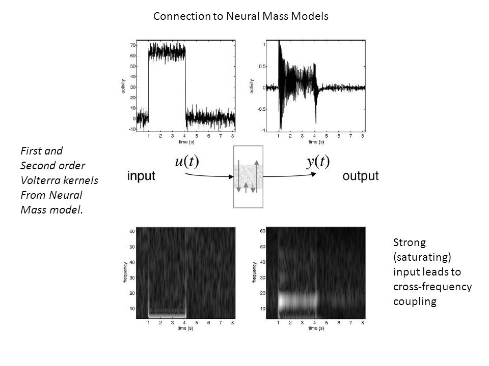 Connection to Neural Mass Models First and Second order Volterra kernels From Neural Mass model.