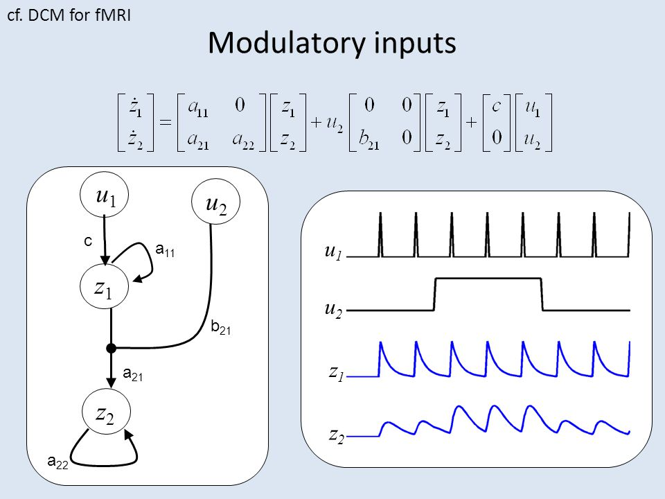 Two Coupled Oscillators 0.3 Here we assume the Phase Interaction Function (PIF) is a sinewave