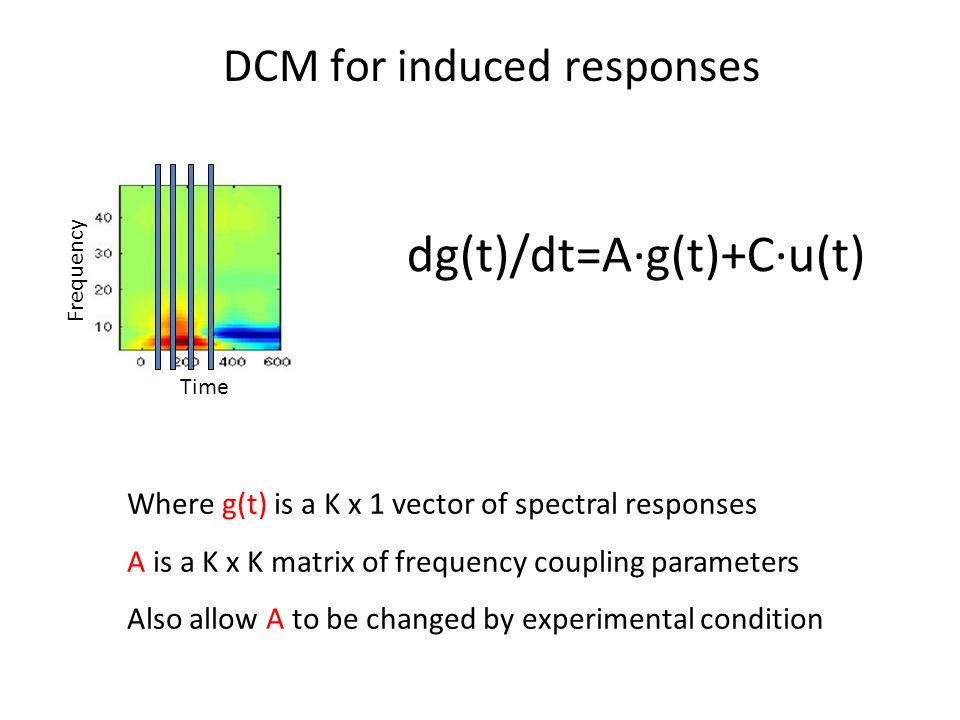 dg(t)/dt=A∙g(t)+C∙u(t) DCM for induced responses Where g(t) is a K x 1 vector of spectral responses A is a K x K matrix of frequency coupling parameters Also allow A to be changed by experimental condition Time Frequency