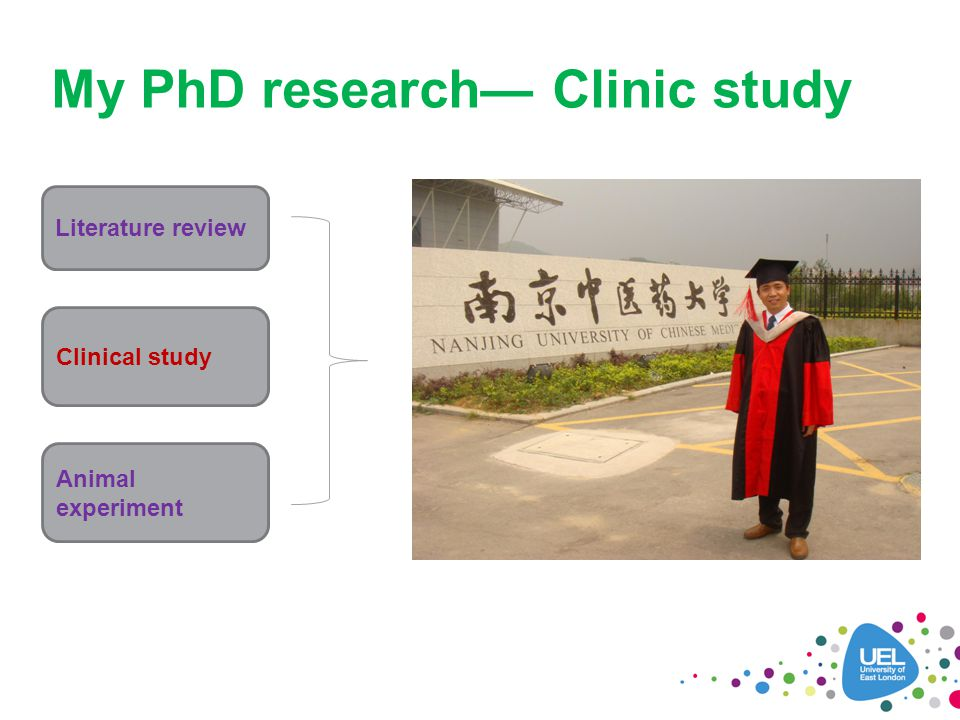 My PhD research— Clinic study Literature review Clinical study Animal experiment