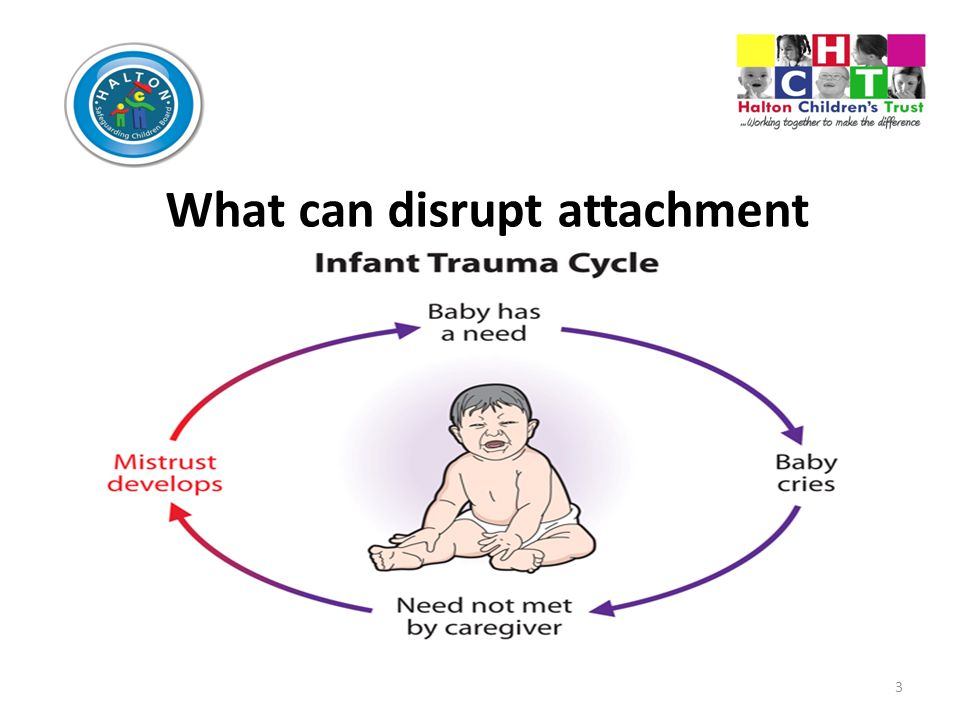 3 What can disrupt attachment development Add text