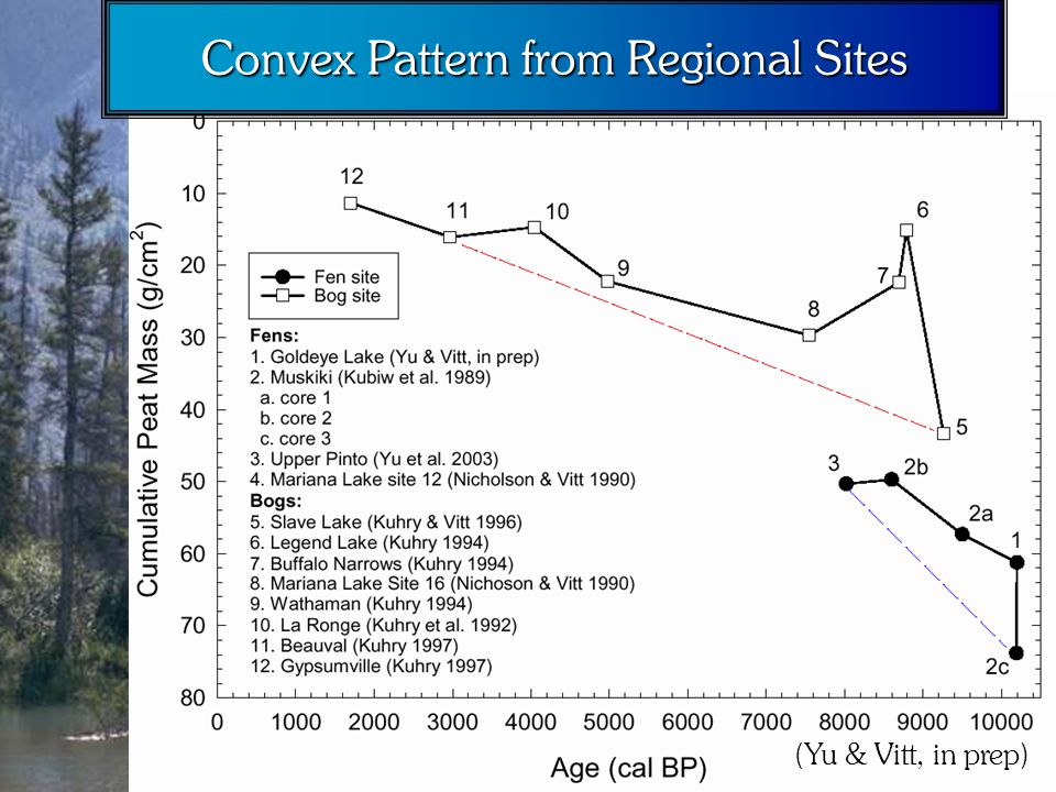 Convex Pattern from Regional Sites (Yu & Vitt, in prep)