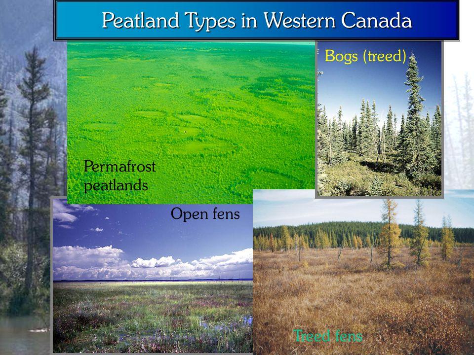 Permafrost peatlands Open fens Treed fens Bogs (treed) Peatland Types in Western Canada