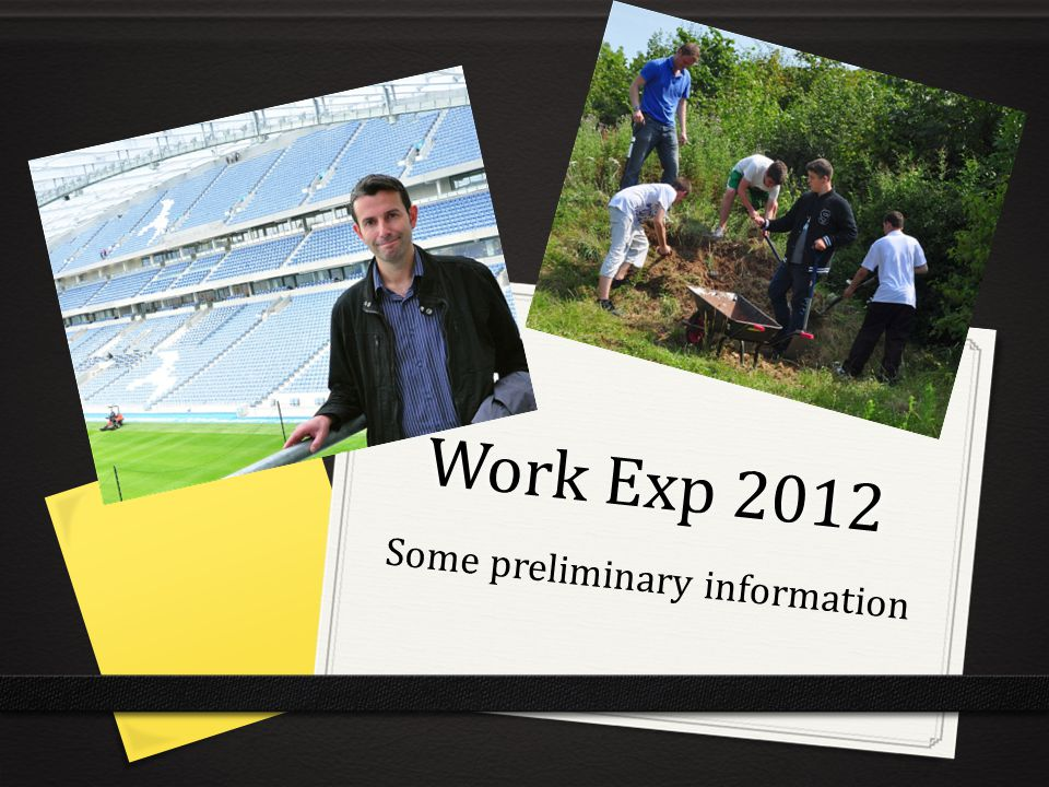 Work Exp 2012 Some preliminary information