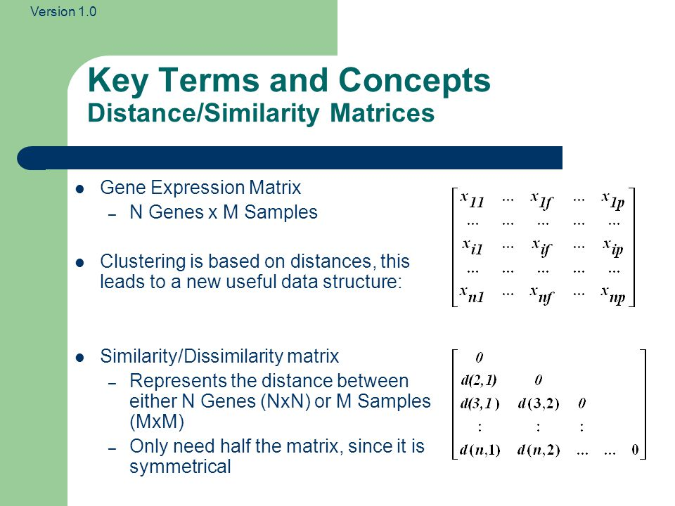 Version 1.0 Key Terms and Concepts Distance/Similarity Matrices Gene Expression Matrix – N Genes x M Samples Clustering is based on distances, this leads to a new useful data structure: Similarity/Dissimilarity matrix – Represents the distance between either N Genes (NxN) or M Samples (MxM) – Only need half the matrix, since it is symmetrical