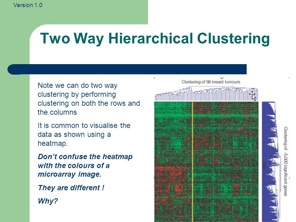 Version 1.0 Two Way Hierarchical Clustering Note we can do two way clustering by performing clustering on both the rows and the columns It is common to visualise the data as shown using a heatmap.