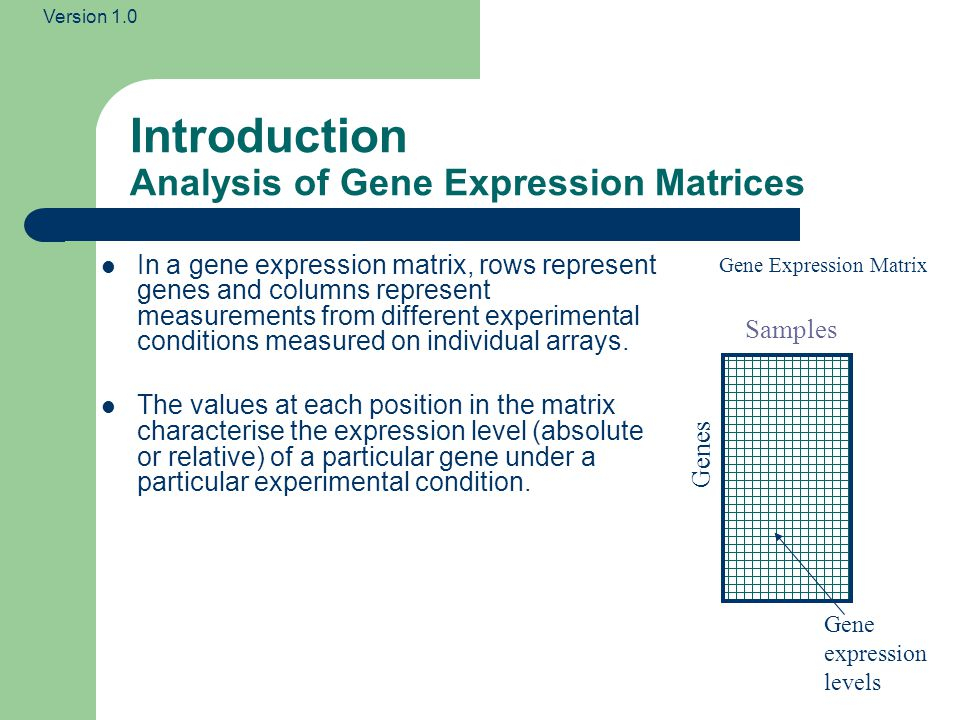 Version 1.0 Introduction Analysis of Gene Expression Matrices Samples Genes Gene expression levels Gene Expression Matrix In a gene expression matrix, rows represent genes and columns represent measurements from different experimental conditions measured on individual arrays.