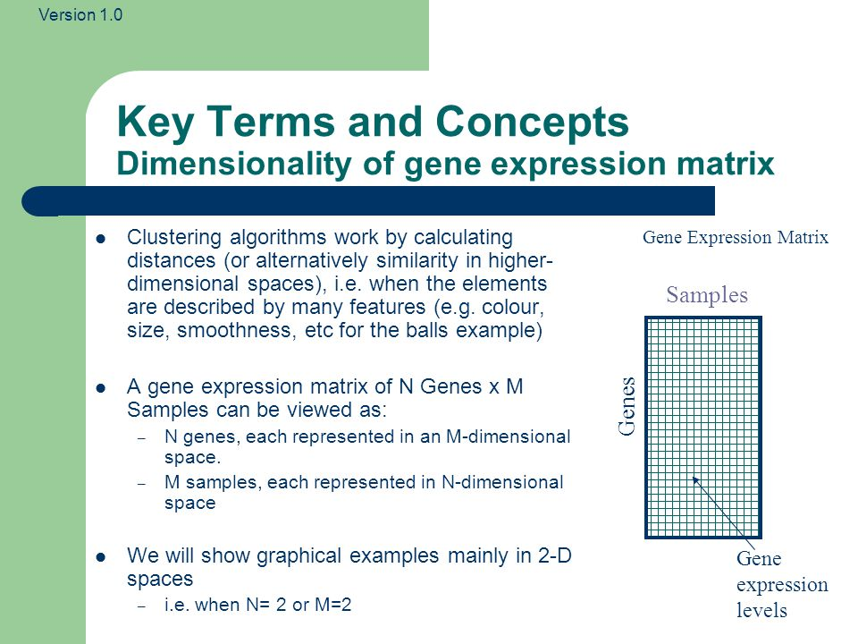 Version 1.0 Key Terms and Concepts Dimensionality of gene expression matrix Clustering algorithms work by calculating distances (or alternatively similarity in higher- dimensional spaces), i.e.