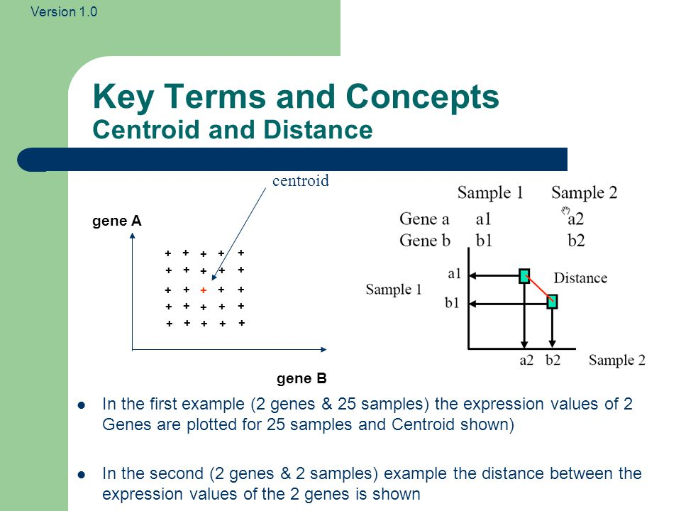 Version 1.0 Key Terms and Concepts Centroid and Distance + + gene A gene B + + + + + + + + + + + + + + + + + + + + + + + centroid In the first example (2 genes & 25 samples) the expression values of 2 Genes are plotted for 25 samples and Centroid shown) In the second (2 genes & 2 samples) example the distance between the expression values of the 2 genes is shown