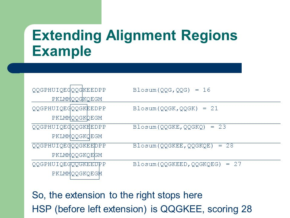 Extending Alignment Regions Example QQGPHUIQEGQQGKEEDPP Blosum(QQG,QQG) = 16 PKLMMQQGKQEGM QQGPHUIQEGQQGKEEDPP Blosum(QQGK,QQGK) = 21 PKLMMQQGKQEGM QQGPHUIQEGQQGKEEDPP Blosum(QQGKE,QQGKQ) = 23 PKLMMQQGKQEGM QQGPHUIQEGQQGKEEDPP Blosum(QQGKEE,QQGKQE) = 28 PKLMMQQGKQEGM QQGPHUIQEGQQGKEEDPP Blosum(QQGKEED,QQGKQEG) = 27 PKLMMQQGKQEGM So, the extension to the right stops here HSP (before left extension) is QQGKEE, scoring 28