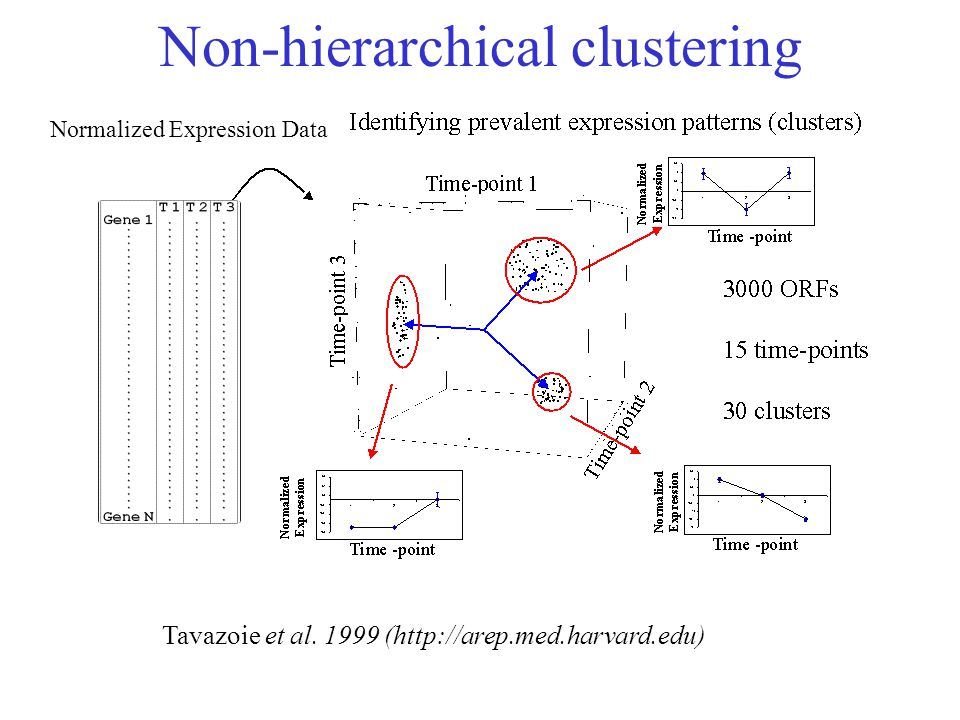 Normalized Expression Data Tavazoie et al. 1999 (http://arep.med.harvard.edu) Non-hierarchical clustering