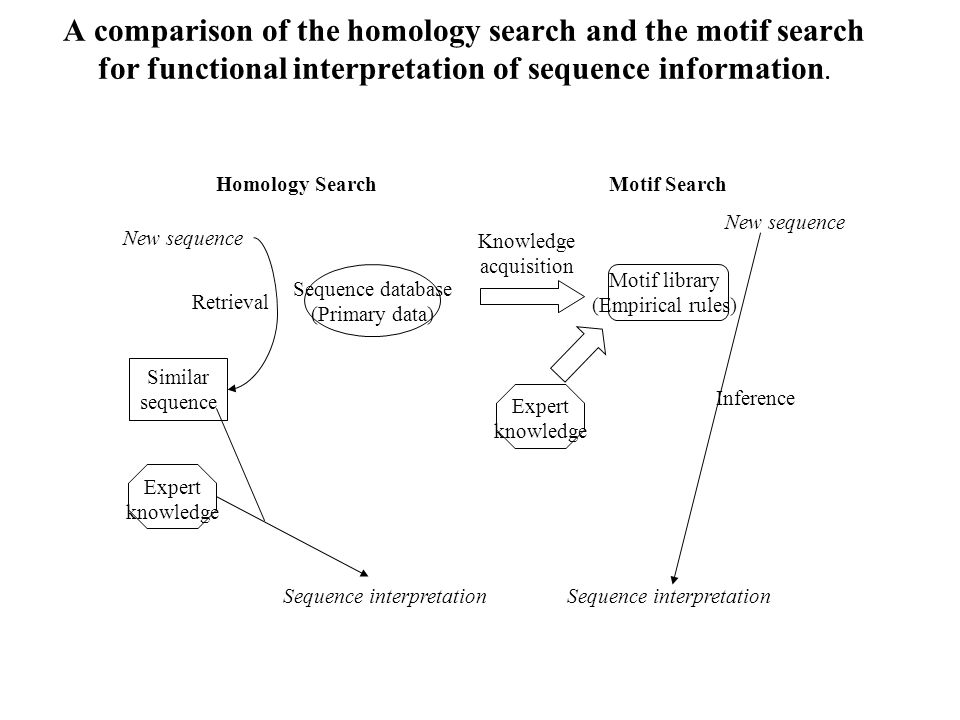 A comparison of the homology search and the motif search for functional interpretation of sequence information. Homology SearchMotif Search New sequen