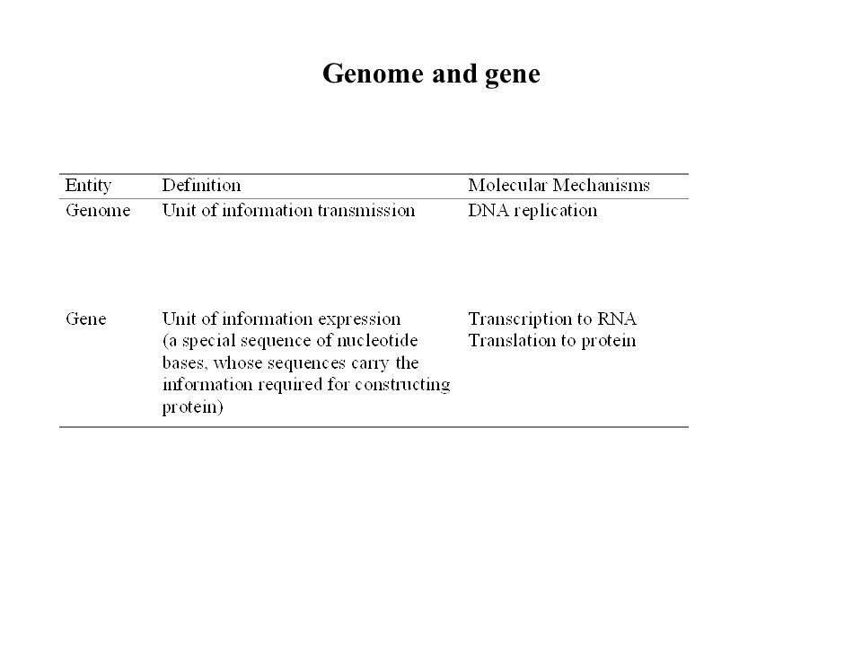 Genome and gene