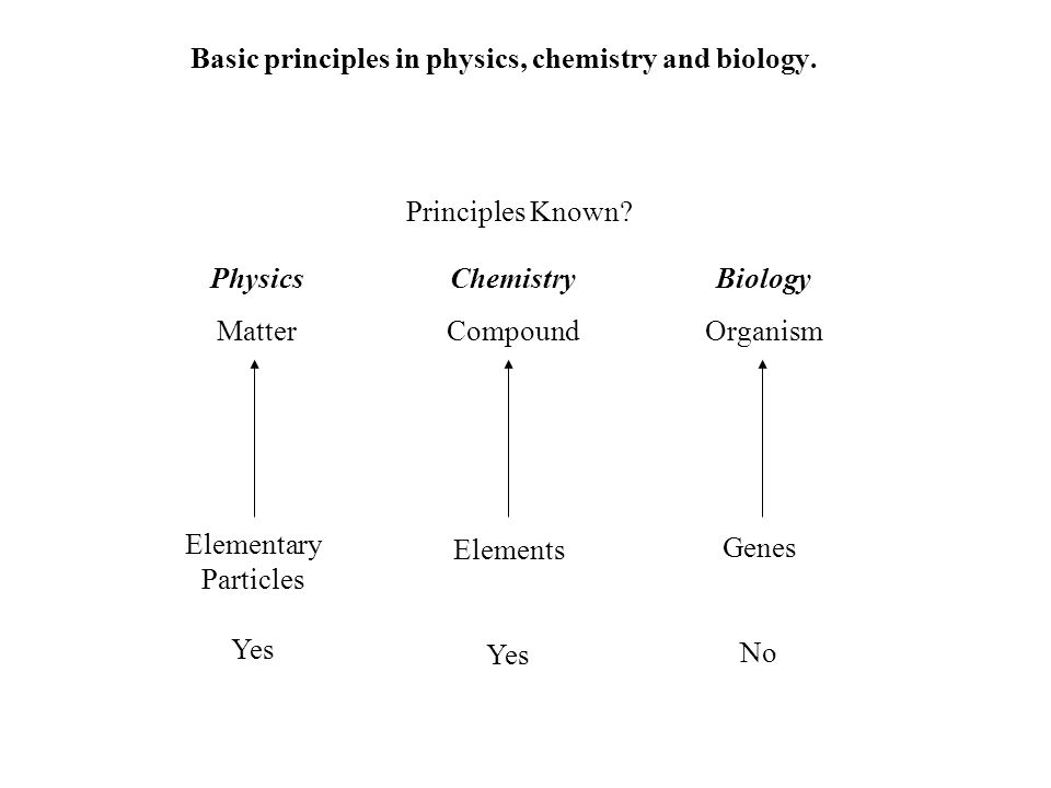 Basic principles in physics, chemistry and biology.