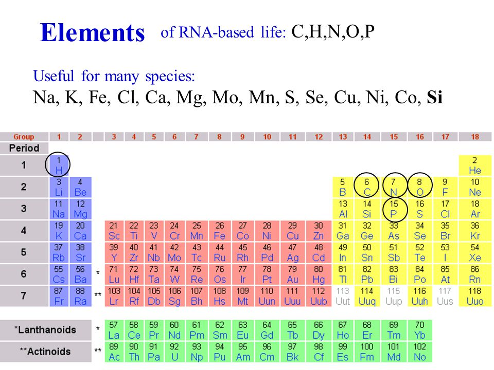 of RNA-based life: C,H,N,O,P Useful for many species: Na, K, Fe, Cl, Ca, Mg, Mo, Mn, S, Se, Cu, Ni, Co, Si Elements