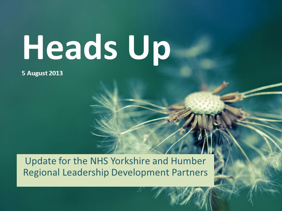 Heads Up 5 August 2013 Update for the NHS Yorkshire and Humber Regional Leadership Development Partners