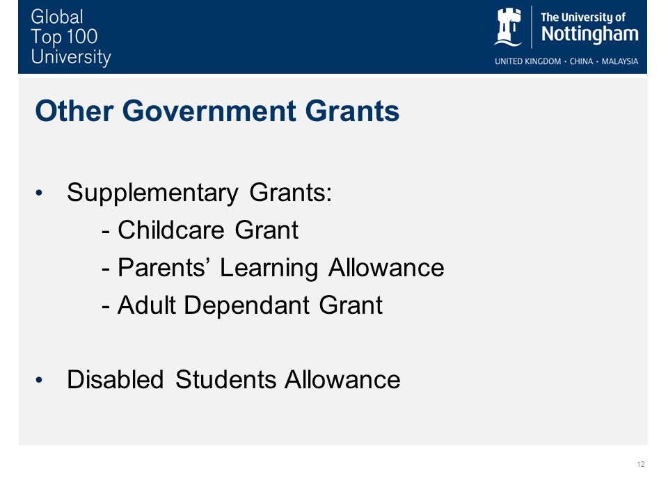12 Other Government Grants Supplementary Grants: - Childcare Grant - Parents' Learning Allowance - Adult Dependant Grant Disabled Students Allowance