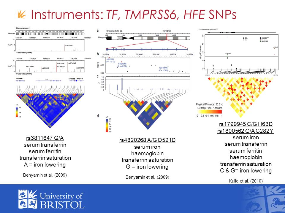 Instruments: TF, TMPRSS6, HFE SNPs rs3811647 G/A serum transferrin serum ferritin transferrin saturation A = iron lowering Benyamin et al.
