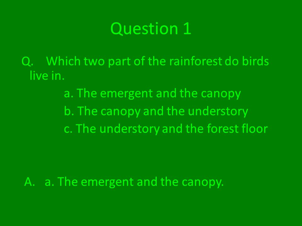 Question 1 Q. Which two part of the rainforest do birds live in.