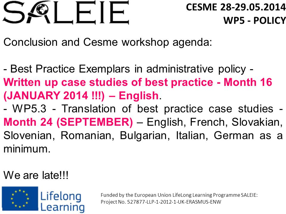 CESME 28-29.05.2014 WP5 - POLICY Funded by the European Union LifeLong Learning Programme SALEIE: Project No.