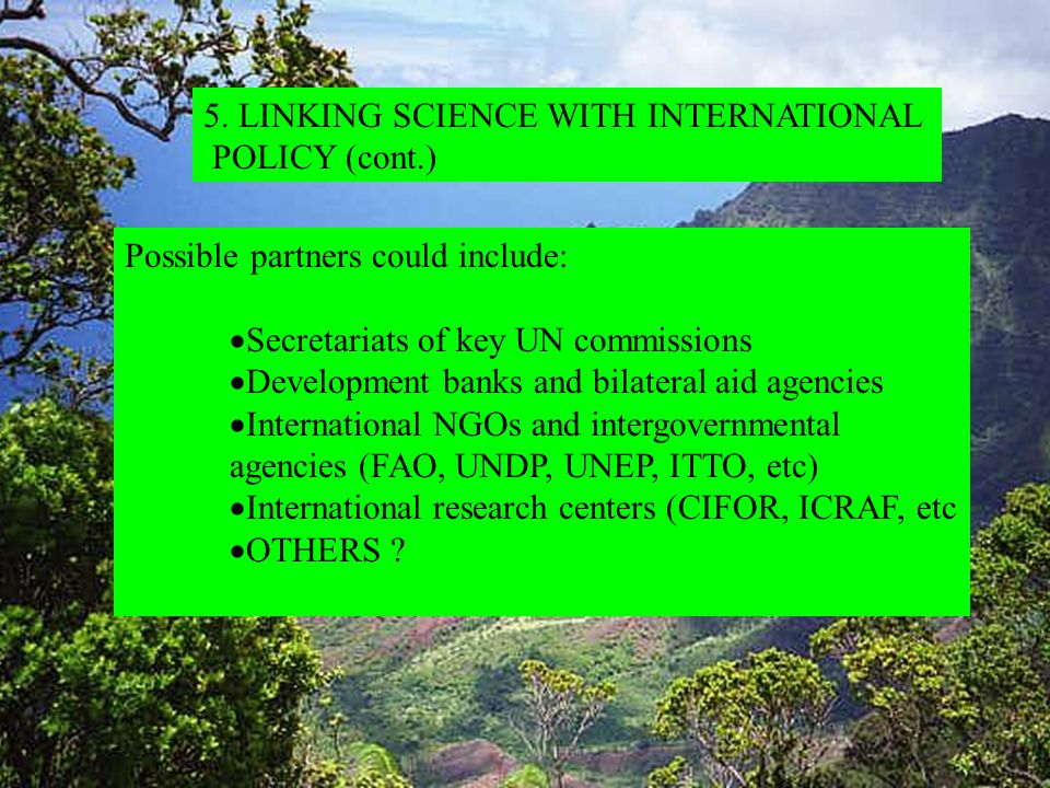 Possible partners could include:  Secretariats of key UN commissions  Development banks and bilateral aid agencies  International NGOs and intergovernmental agencies (FAO, UNDP, UNEP, ITTO, etc)  International research centers (CIFOR, ICRAF, etc  OTHERS .