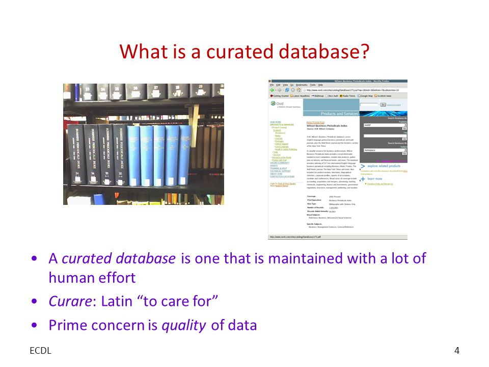 What is a curated database.