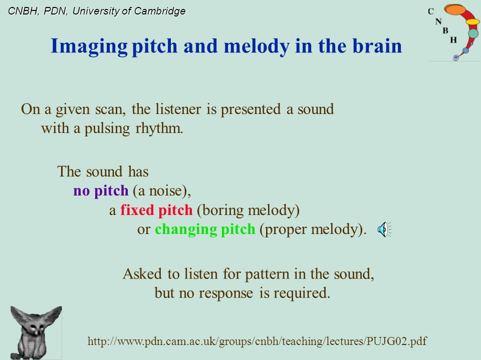 CNBH, PDN, University of Cambridge Imaging pitch and melody in the brain The sound has no pitch (a noise), a fixed pitch (boring melody) or changing pitch (proper melody).