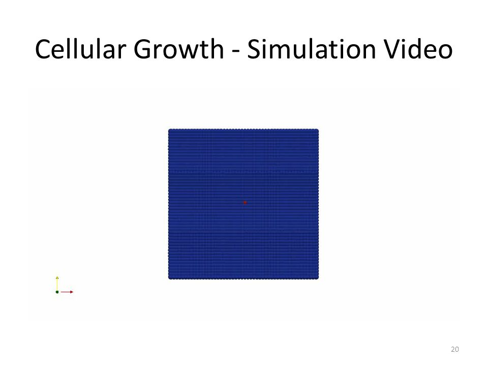 Cellular Growth - Simulation Video 20