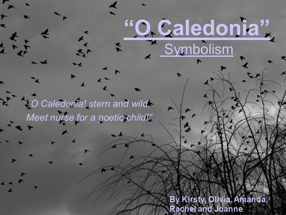 """O Caledonia"" Symbolism ""O Caledonia! stern and wild, Meet nurse for a poetic child!"" By Kirsty, Olivia, Amanda, Rachel and Joanne"