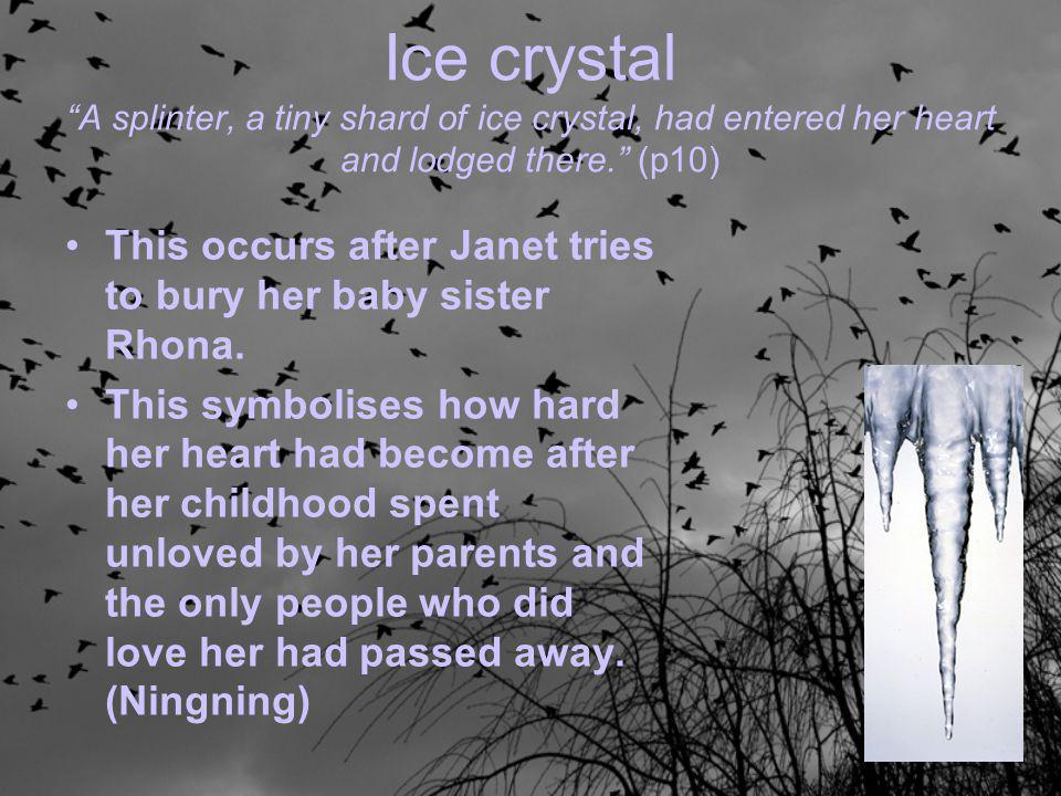 "Ice crystal ""A splinter, a tiny shard of ice crystal, had entered her heart and lodged there."" (p10) This occurs after Janet tries to bury her baby si"