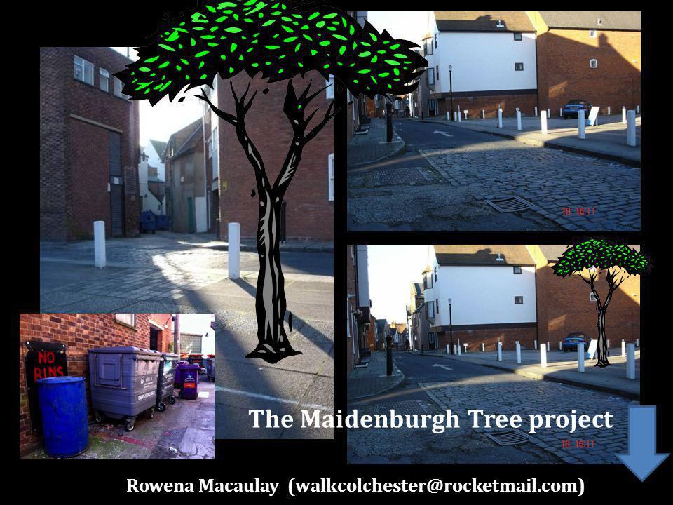 Rowena Macaulay The Maidenburgh Tree project