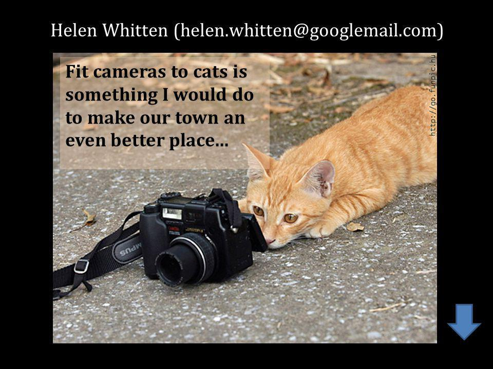 Helen Whitten Fit cameras to cats is something I would do to make our town an even better place...