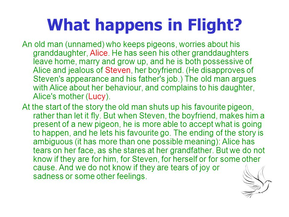 What happens in Flight? An old man (unnamed) who keeps pigeons, worries about his granddaughter, Alice. He has seen his other granddaughters leave hom