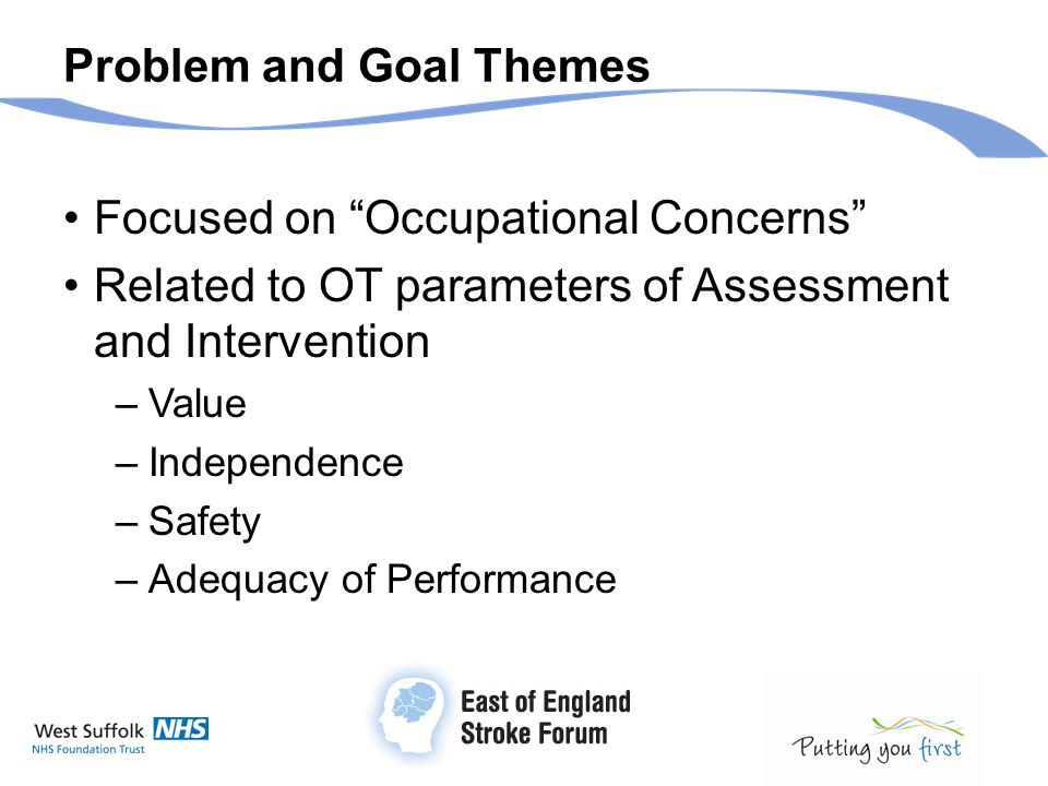 "Problem and Goal Themes Focused on ""Occupational Concerns"" Related to OT parameters of Assessment and Intervention –Value –Independence –Safety –Adequ"