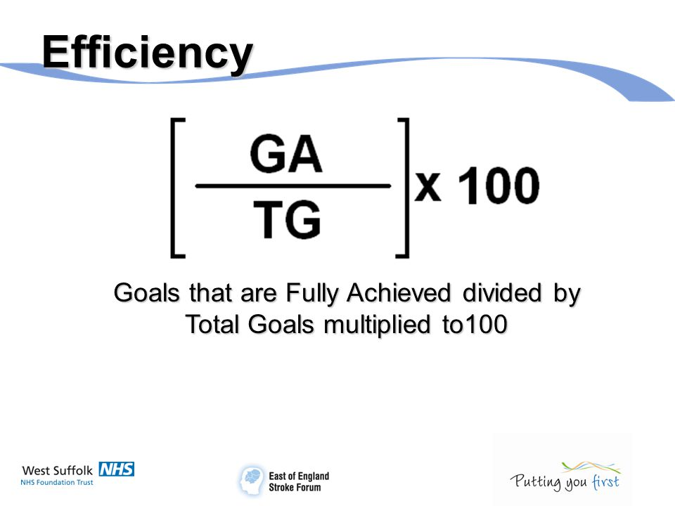 Efficiency Goals that are Fully Achieved divided by Total Goals multiplied to100