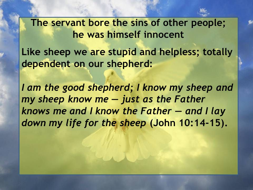 The servant bore the sins of other people; he was himself innocent Like sheep we are stupid and helpless; totally dependent on our shepherd: I am the good shepherd; I know my sheep and my sheep know me — just as the Father knows me and I know the Father — and I lay down my life for the sheep (John 10:14-15).