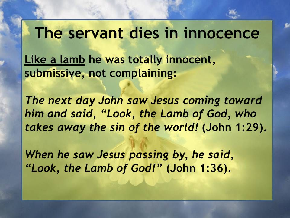 The servant dies in innocence Like a lamb he was totally innocent, submissive, not complaining: The next day John saw Jesus coming toward him and said, Look, the Lamb of God, who takes away the sin of the world.