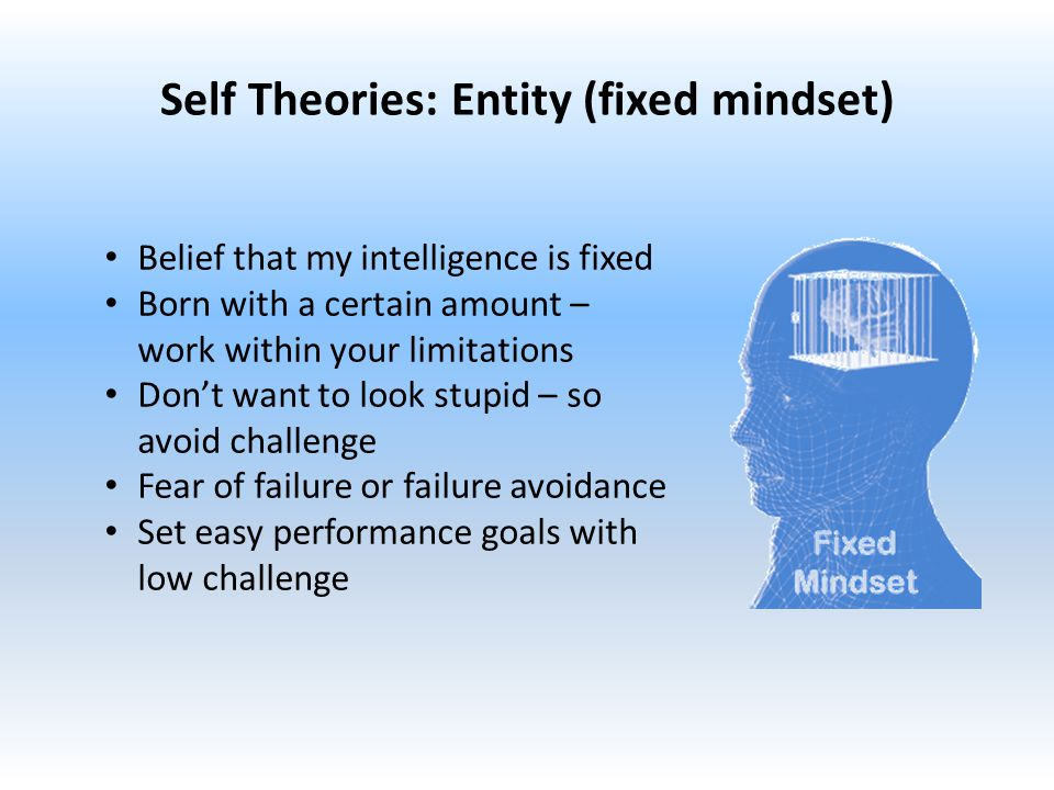 Self Theories: Entity (fixed mindset) Belief that my intelligence is fixed Born with a certain amount – work within your limitations Don't want to look stupid – so avoid challenge Fear of failure or failure avoidance Set easy performance goals with low challenge