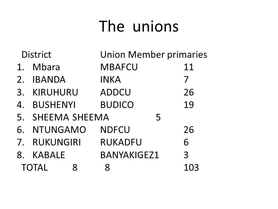 The unions District UnionMember primaries 1.MbaraMBAFCU11 2.IBANDAINKA7 3.KIRUHURUADDCU26 4.BUSHENYIBUDICO19 5.SHEEMASHEEMA5 6.NTUNGAMONDFCU26 7.RUKUNGIRIRUKADFU6 8.KABALEBANYAKIGEZ13 TOTAL 8 8103