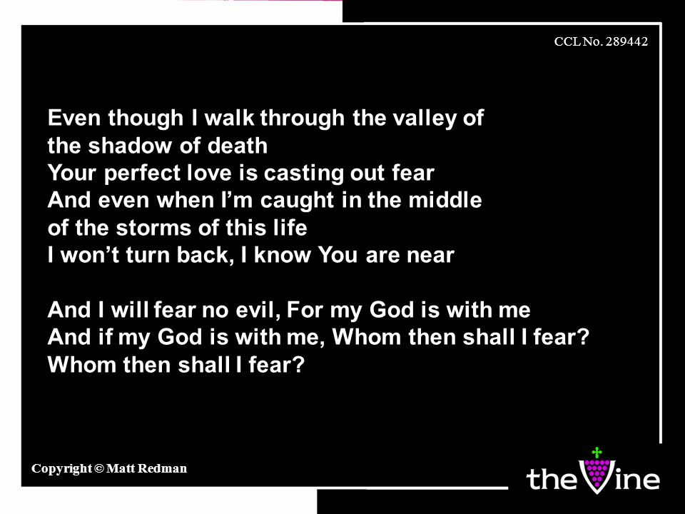 Even though I walk through the valley of the shadow of death Your perfect love is casting out fear And even when I'm caught in the middle of the storm