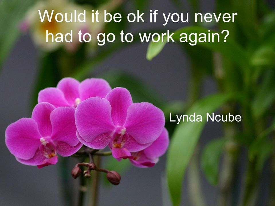Would it be ok if you never had to go to work again? Lynda Ncube
