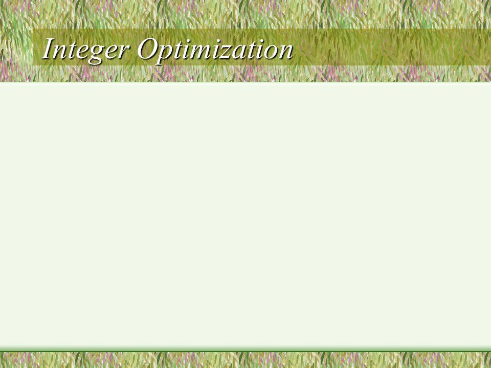 Integer Optimization