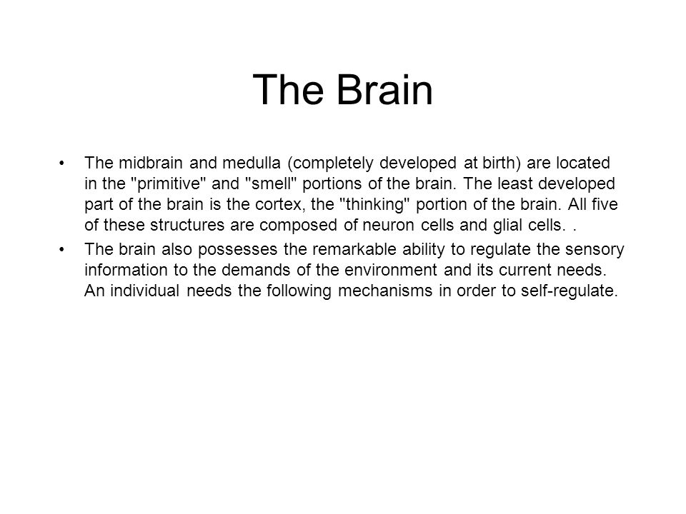 The Brain The midbrain and medulla (completely developed at birth) are located in the