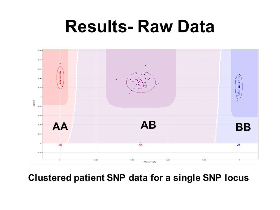 Results- Raw Data Clustered patient SNP data for a single SNP locus AA BB AB
