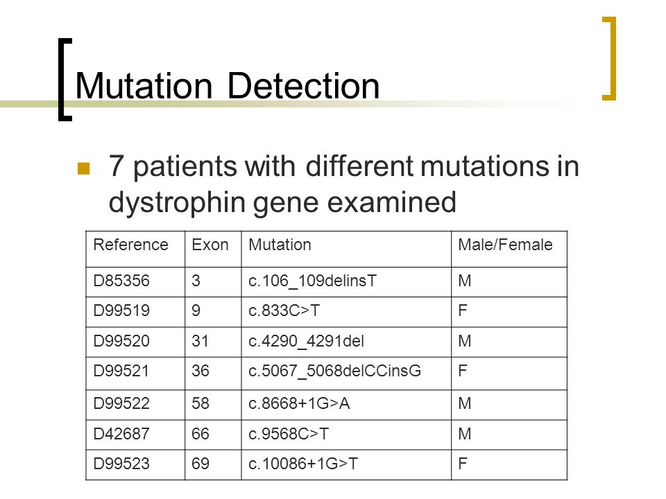 Mutation Detection ReferenceExonMutationMale/Female D853563c.106_109delinsTM D995199c.833C>TF D9952031c.4290_4291delM D9952136c.5067_5068delCCinsGF D9952258c.8668+1G>AM D4268766c.9568C>TM D9952369c.10086+1G>TF 7 patients with different mutations in dystrophin gene examined