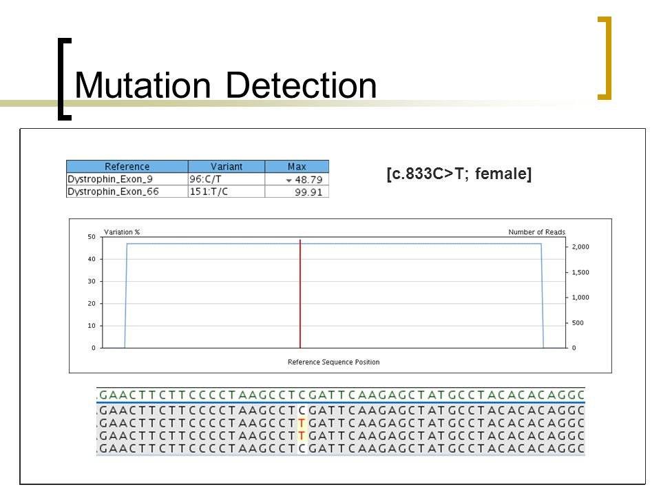 Mutation Detection All mutations identified and called by software in variant tables Investigated level of coverage required for mutation detection Achieved by mixing patient libraries with mutations with WT library [c.4290_4291del; male][c.833C>T; female]