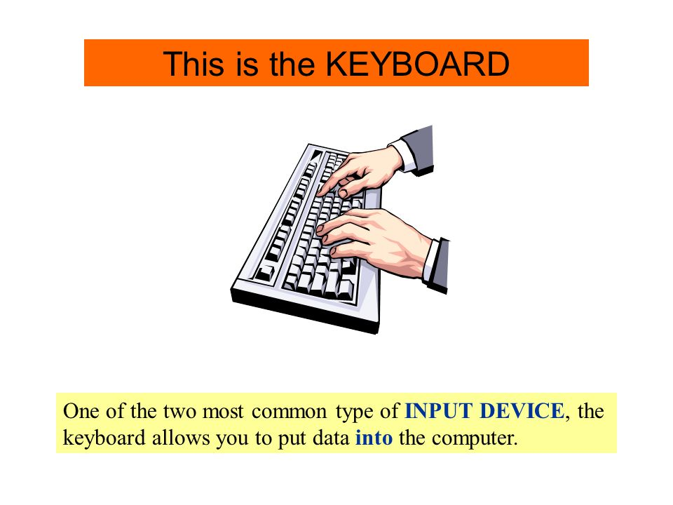 Keyboard Info. One of the two most common type of INPUT DEVICE, the keyboard allows you to put data into the computer. Keyboard This is the KEYBOARD