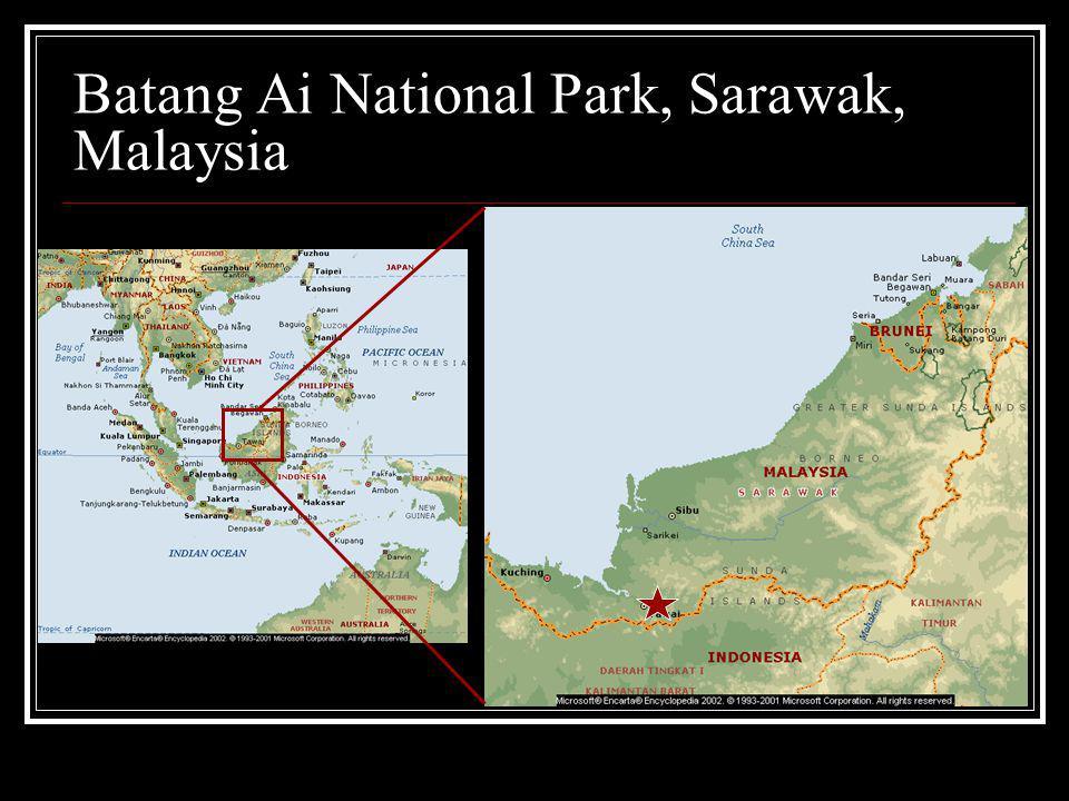 Batang Ai National Park, Sarawak, Malaysia