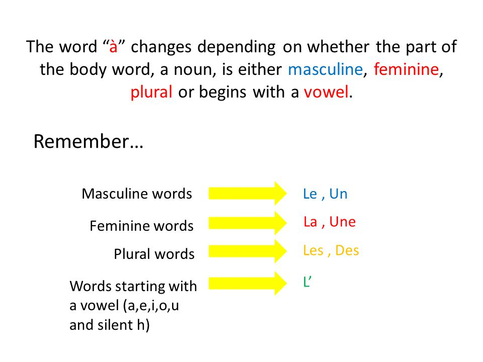 The word à changes depending on whether the part of the body word, a noun, is either masculine, feminine, plural or begins with a vowel.